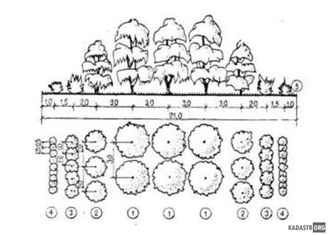 Конструкция звена лесозащитной полосы изолирующего типа (ЛПИ-2)