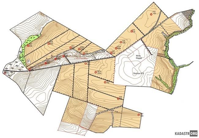 Схема размещения отбора образцов почв на территории агроэкосистемы