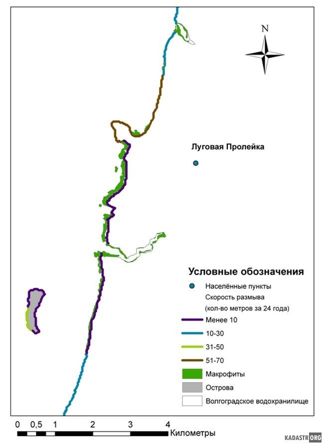 Поясное распределение макрофитов у пос. Луговая Пролейка